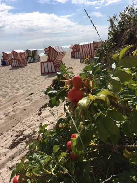 Badespaß am feinen Ostseestrand vor der Haustür