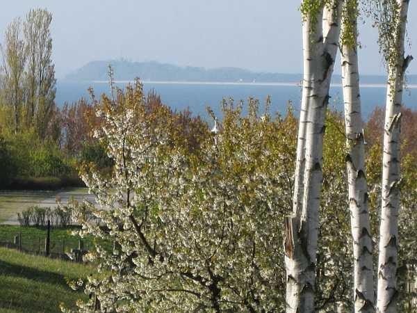 Ostsee-Blick von Wohnung und Balkon