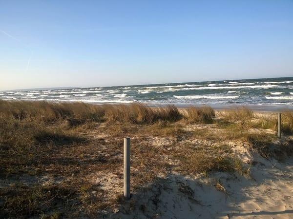Strandlandschaft