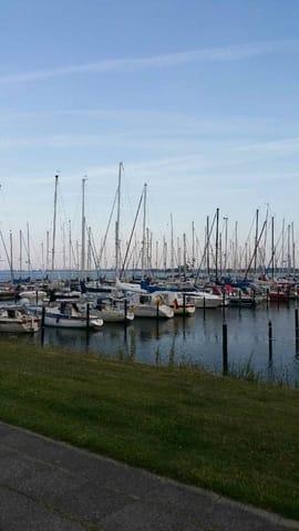 Hafen Maasholm