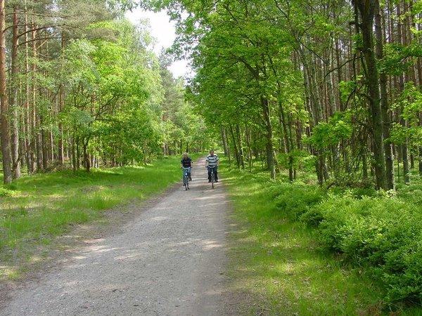 Herrliche Fahrradwege in der Baaber Heide