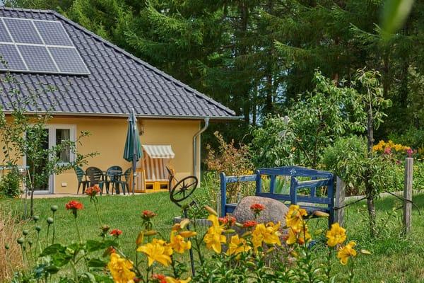 Garten - Blick auf die Terrasse