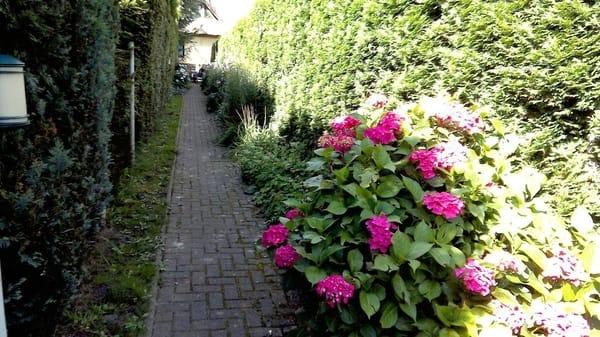 Ein Weg voller Blumen begleitet Sie zu Ihrer Fewo