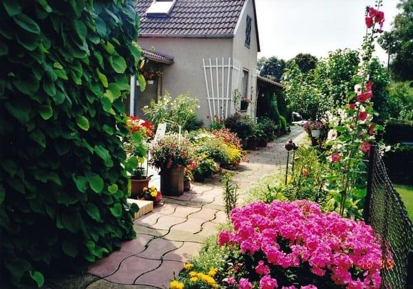 Gartenweg vor der Terrasse