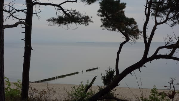 Melancholische Stimmung am Strand von Zempin