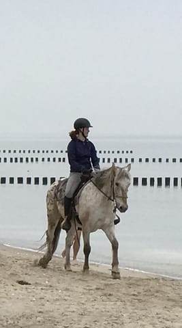 Reiten am Ufer der Ostsee