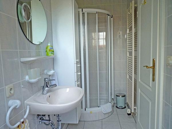 Duschbad mit Fuß- und Wandheizung, direktem Zugang vom Wohn-/Schlafbereich, ausgestattet mit Waschtich, Spiegel, Ablage, WC und Dusche, abgerundet mit entsprechenden Bad-Accessoires