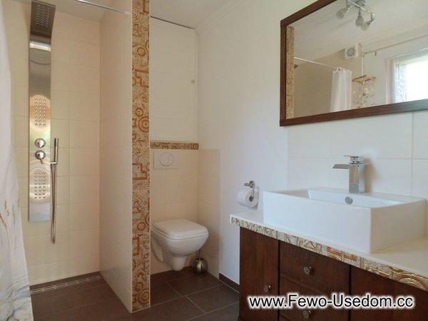 Das Bad mit Dusche, WC und WB