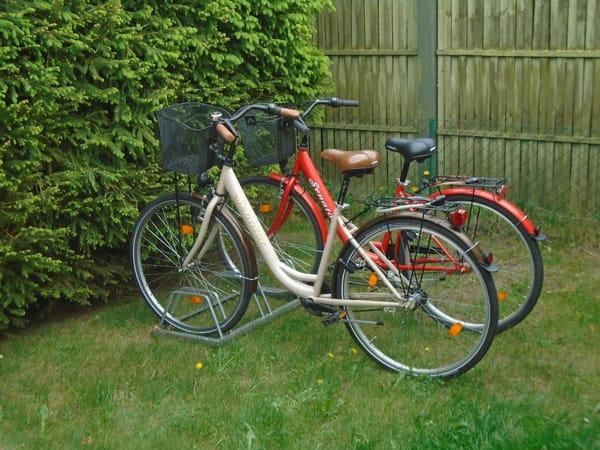 mit unseren Fahrrädern können Sie die Gegend erkunden