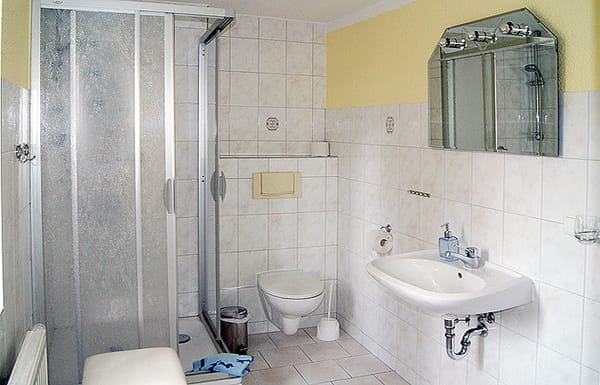 Tageslichtbad mit Dusche/WC und Fön