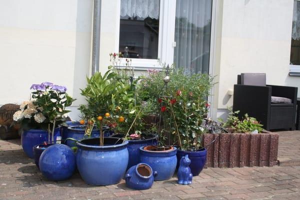 Terrasse zur Wohnung