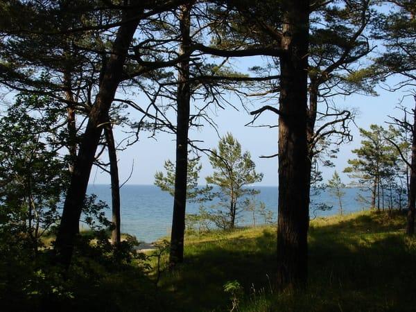 auf dem Weg zur Ostsee
