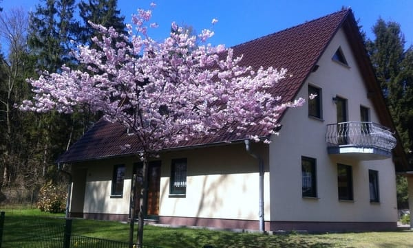 Unser tolles Ferienhaus mit drei Ferienwohnungen im Grünen und trotzdem zentrumsnah