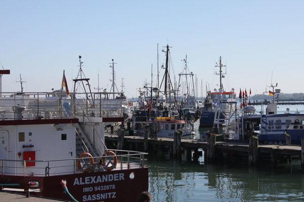 Der Hafen in Sassnitz - ein leckeres Fischbrötchen vom Fischer