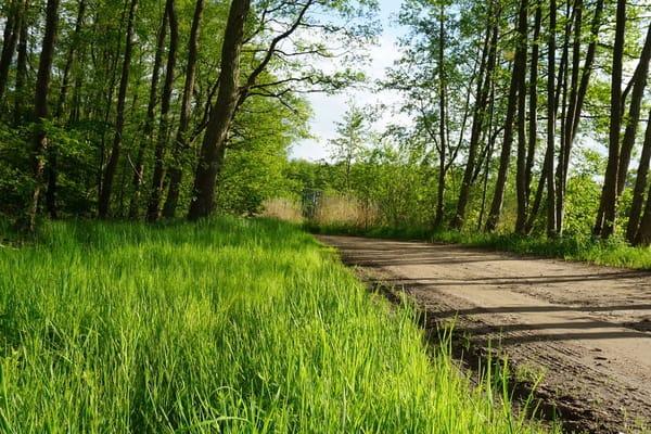 unmittelbar am Radweg zur Ostsee 3 km