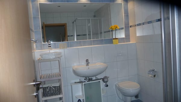 geräumiges Bad mit Dusche/WC
