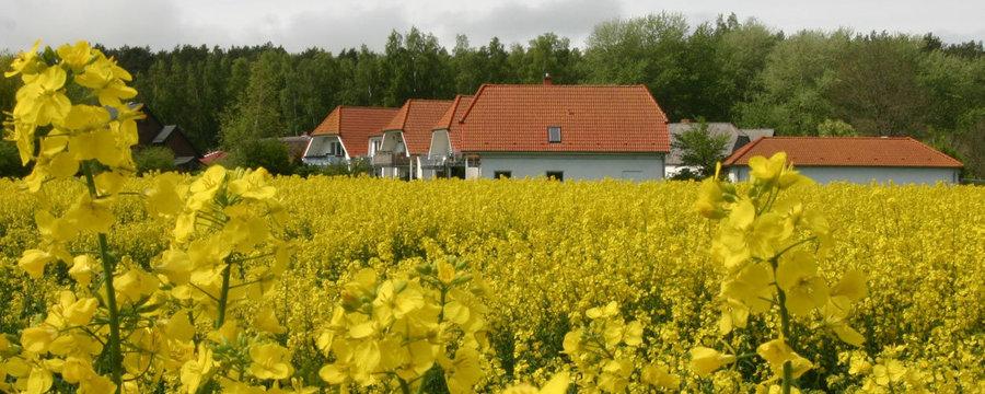 """Die """"Ferienresidenz am Nationalpark"""" in Volsvitz bei Gingst"""