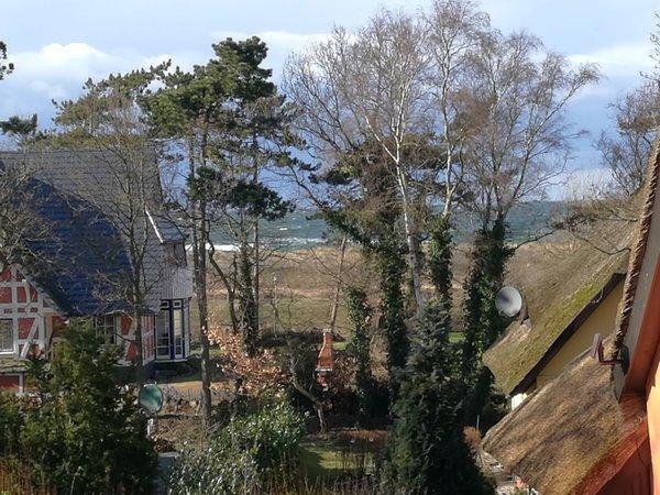 Blick vom Balkon im Früjahr