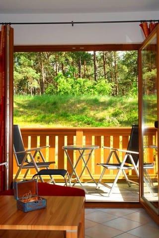 Blick aus dem Wohnzimmer auf den Balkon zum Dünenwald