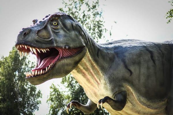 Dinopark in Mölschow