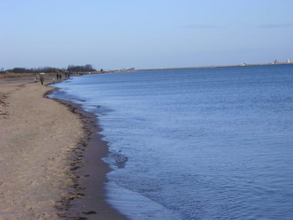 Strand Richtung Weidefeld