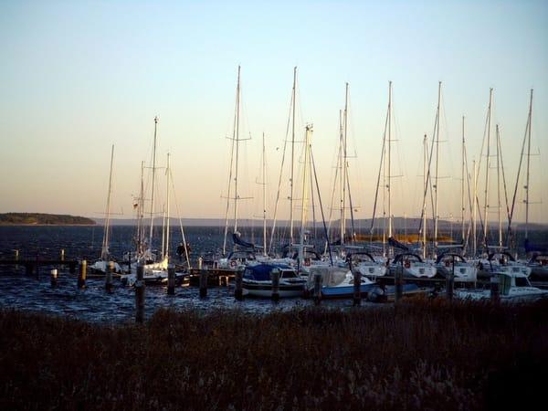 Breeger Bodden und Hafen