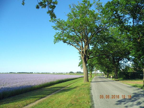 Natur pur, Blick am FH vorbei Richtung Trent