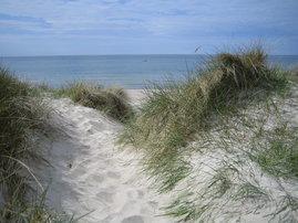 Ihr erster Blick auf die Ostsee