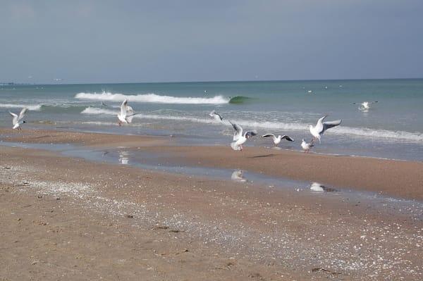 Strand von Baabe