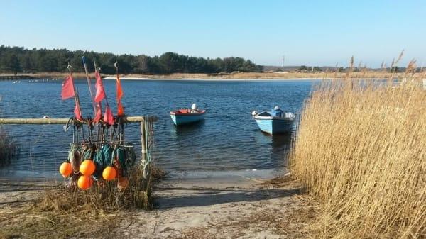 Hafen Zingst ca. 5 Min zu Fuß entfernt