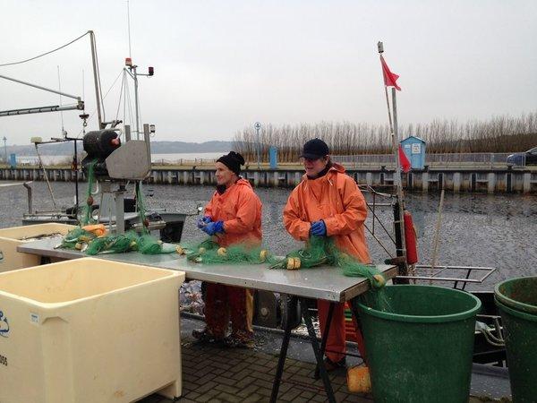 Die Thiessower Fischer beim ´Hering puckenˋ