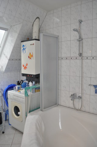 Das Bad mit Dusche und Waschmaschine