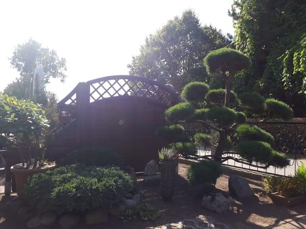 Bungalows im idyllischen Garten