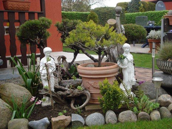 Gartengestaltung Alt Glowe 4