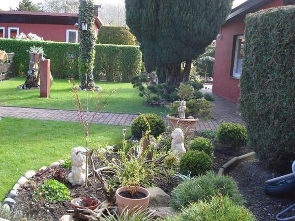 LOTTE rechts im Garten