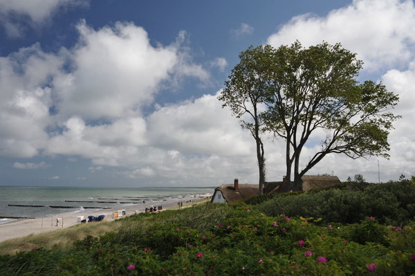 Ahrenshoop Strand