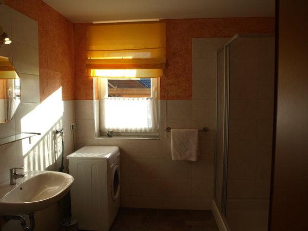 Bad im EG mit Toilette, Waschmaschine und Dusche