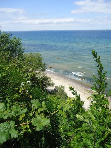 Von der Steilküste aus haben Sie ein traumhaften Blick auf die Ostsee.