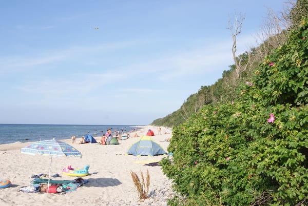der Strand von Bakenberg (Nonnevitz)