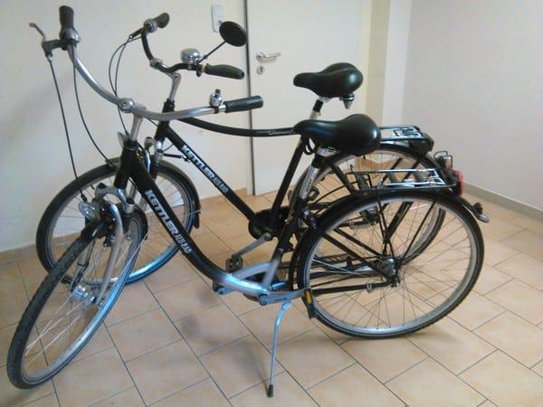 Fahrräder im Preis enthalten,  28iger, 7 Gang-Naben- Schaltung