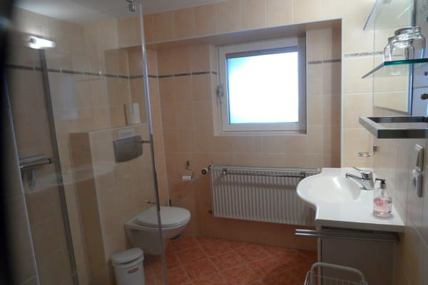 Duschbad, Toilette