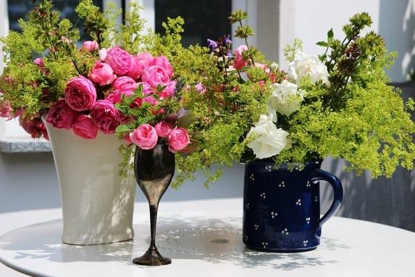 Herzliche Blumengrüße aus unserem Garten