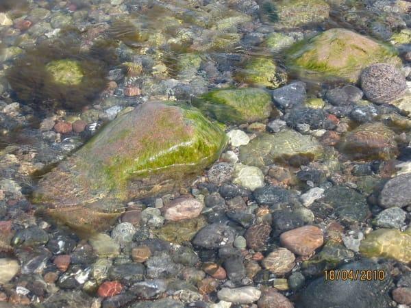Oder Steine sammeln am Steinstrand hinterm Hafen von Glowe