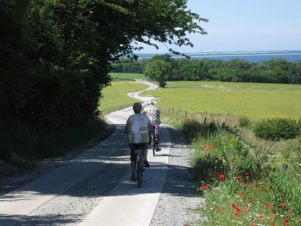 Radweg auf der Jasmund-Halbinsel mit Blick zum Bodden
