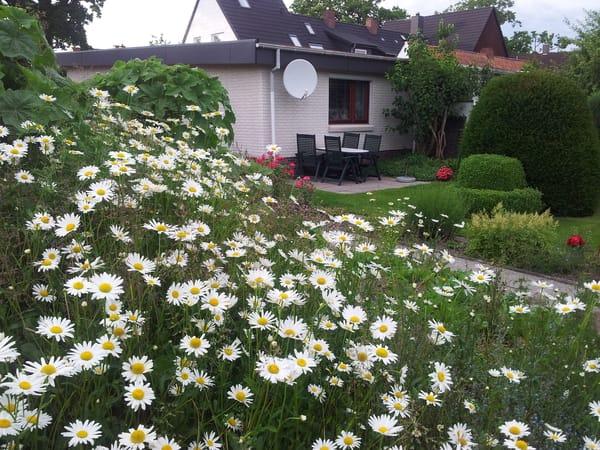 Terrasse i. Sommer mit Gartenmöbel (Tisch, 4 Stühle u. Grill) Klappliegen vorhanden.