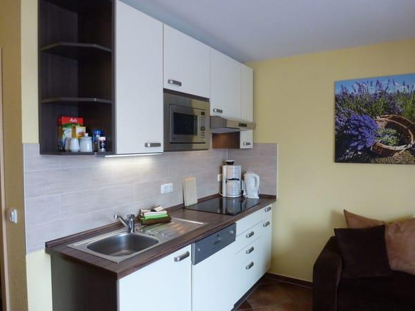 moderne Küche mit Geschirrspüler , Mikrowelle, Cerankochfeld und extra großen Kühlschrank ( kein Backherd )