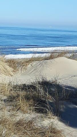 Die mit Ostseesand zugewehten Dünen, nach einem Sturm.