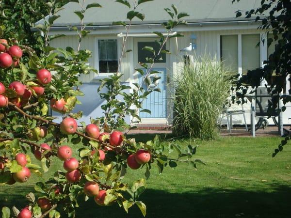 Das Ferienhaus im Herbst