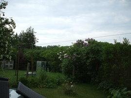 Blick übers Grundstück in Richtung Patziger Heide .Wir wünschen schöne Ferien
