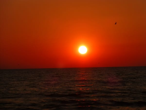 Sonnenaufgang Juni 2019